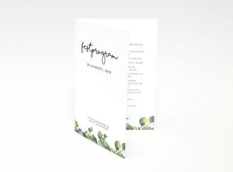 Festprogram Eucalyptus